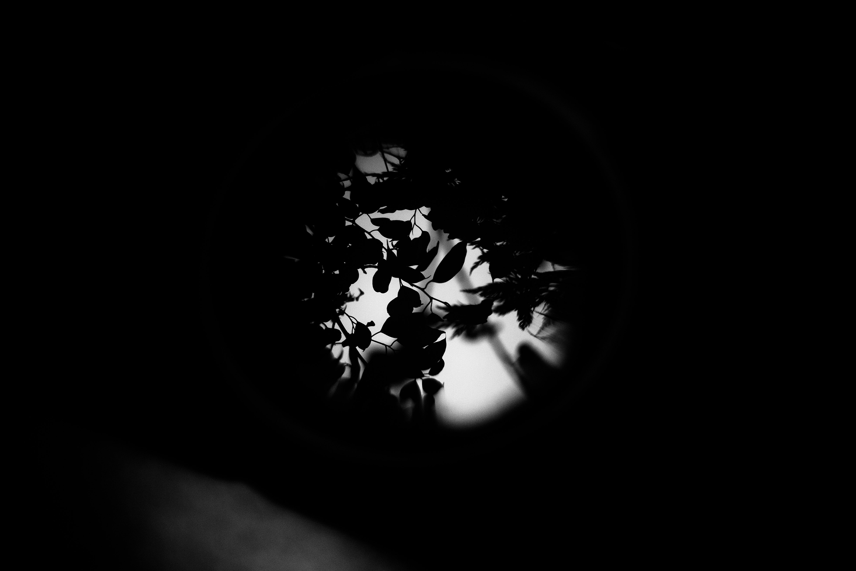 ch_semplicephoto6